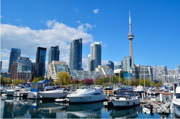 去加拿大留学都有哪些专业选择?求推荐!